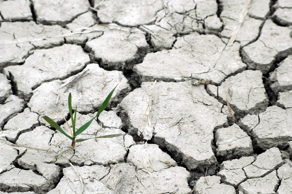 κλιματική αλλαγή - ξηρασία